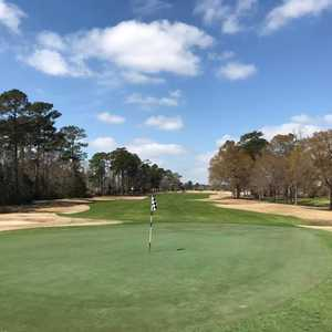 Lion's Paw Golf Links: #18