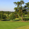 A view of green at Lane Tree Golf Club