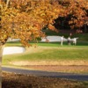 A fall view from Rock Barn Golf and Spa