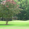 A view from a tee at Pine Lake Country Club