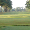 A view from a tee at Wendell Country Club