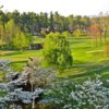 A springtime view from Kenmure Golf Club