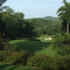 A view of a green at Headwaters Golf Club (Harrison Hepner)