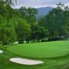 A view of green #12 at Elk River Club